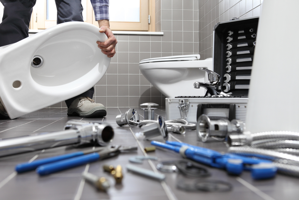 Do You Need New Toilet Installation In Forbes Hill?