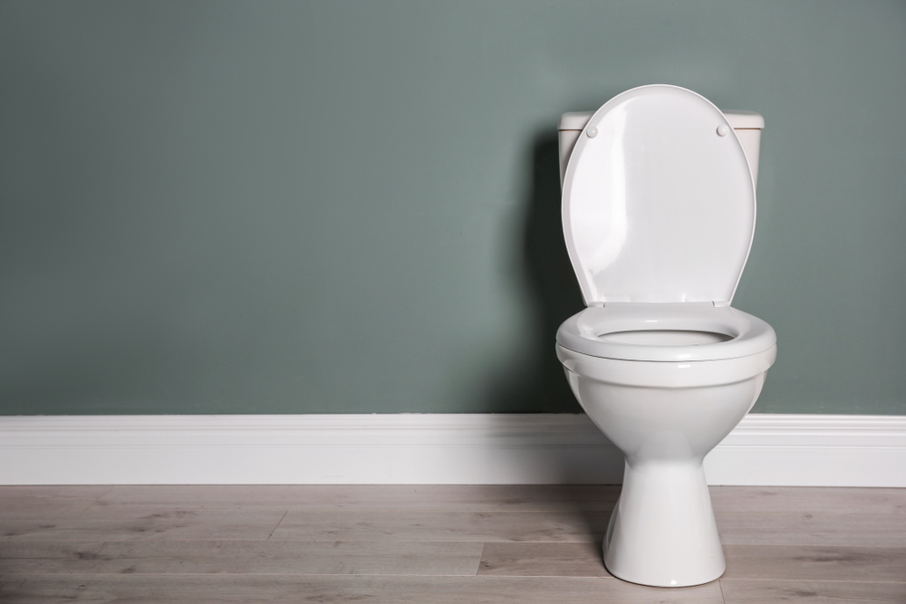 Need New Toilet Installation Or Is It Time For Repair Service? We Will Come To Your Monroe Home!