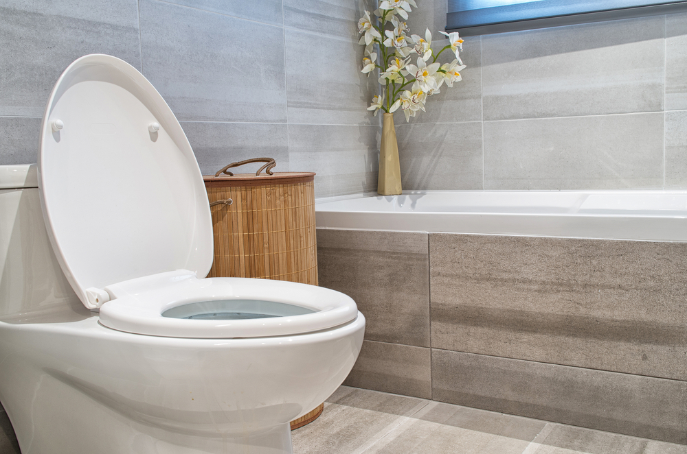 Why Call The Pros For Toilet Installation & Repair Service In Darrington?